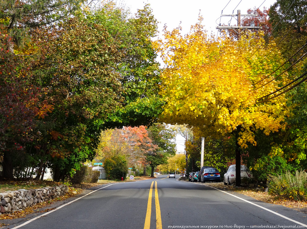 Autumn in New Jersey 04