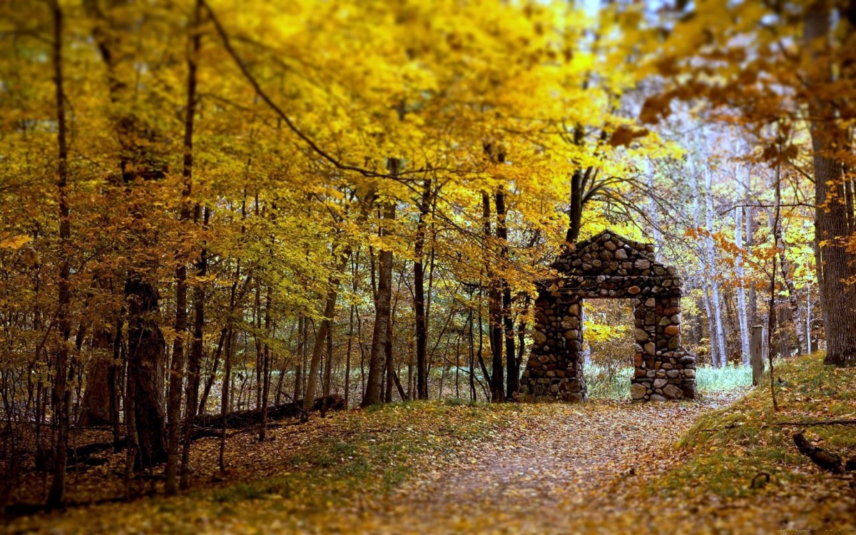 Beautiful autumn photos 04