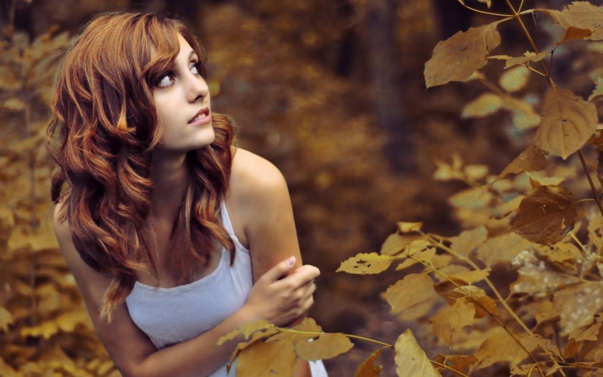Beautiful autumn photos 19