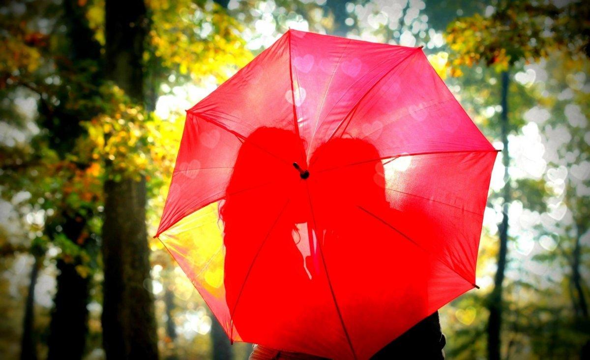 Beautiful autumn photos 20