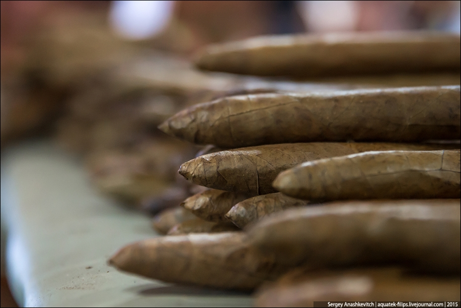 Cigars handmade 13