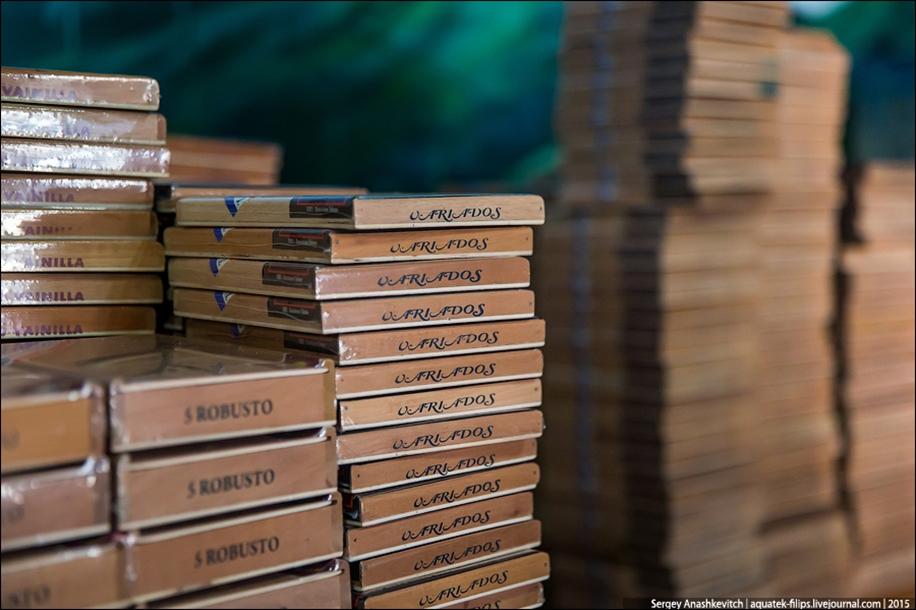 Cigars handmade 17