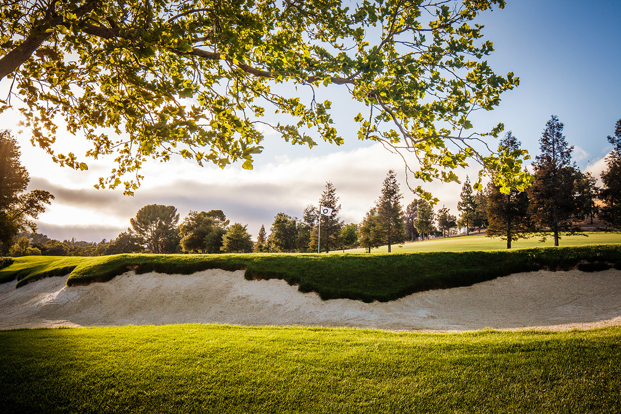 Golf course from R. Brad Knipstein 04