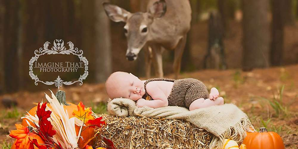 Magical photo shoot baby deer 01