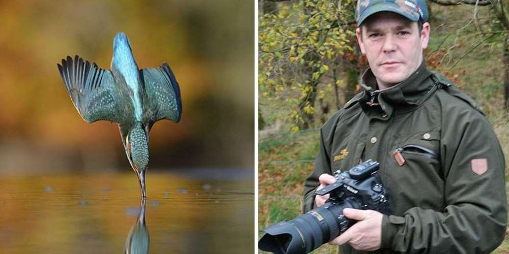 Photographer Finally Takes Perfect Shot Of Kingfisher 01