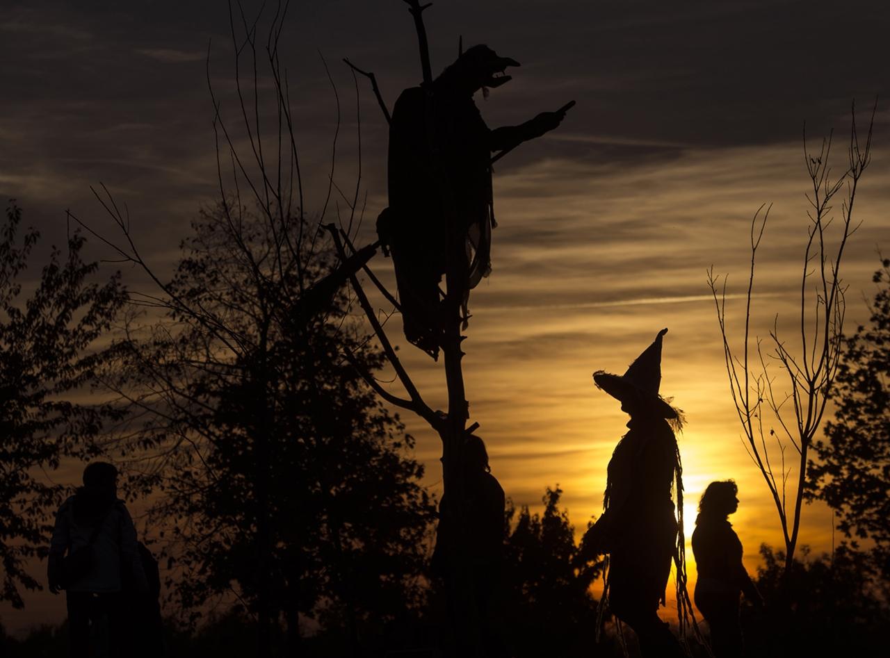 Photos of Halloween 2015_10