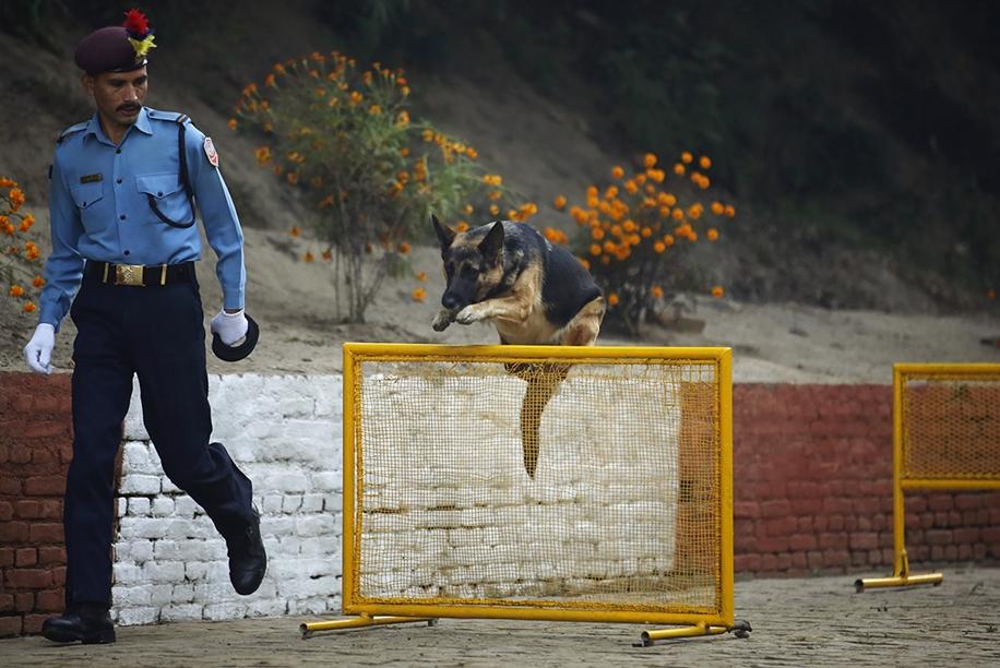 Police in Kathmandu 05