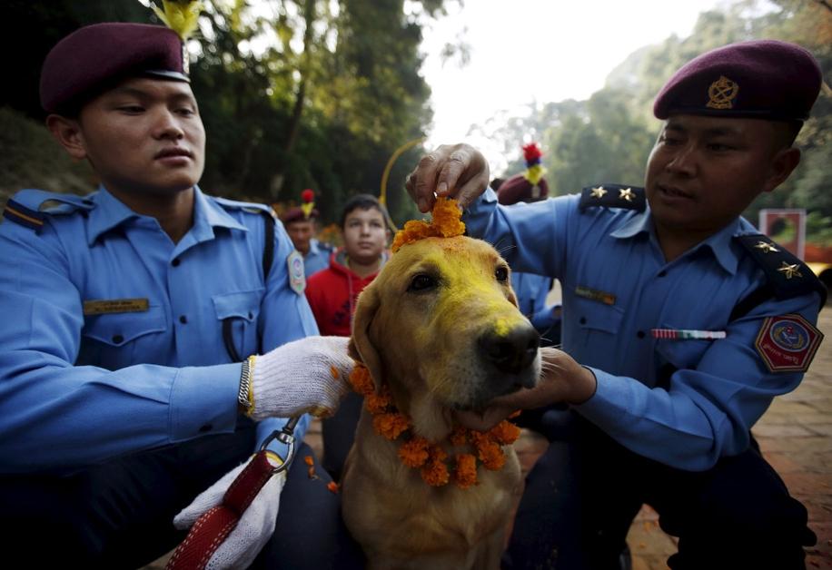 Police in Kathmandu 10