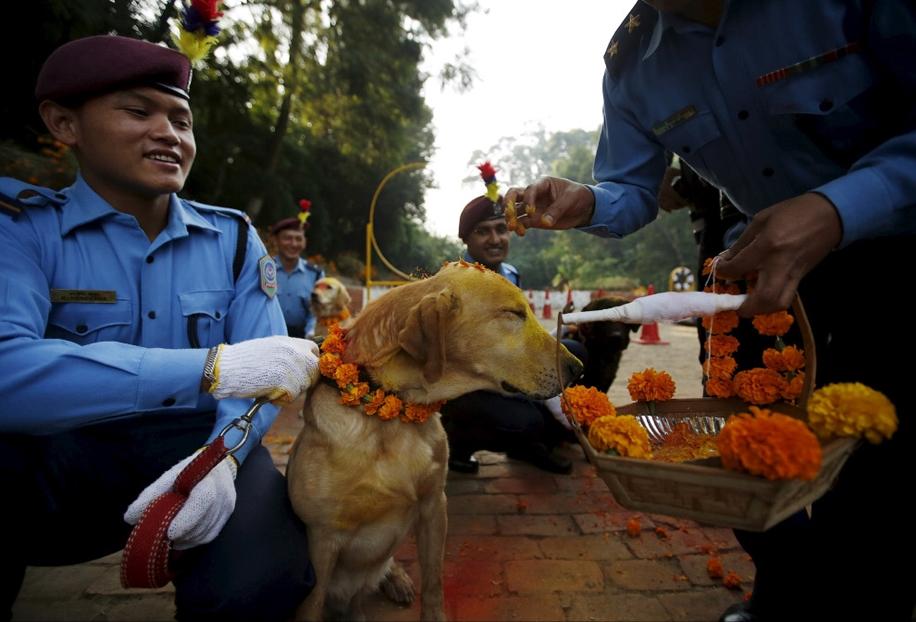 Police in Kathmandu 11