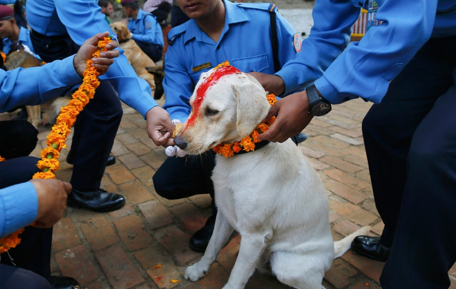Police in Kathmandu 14