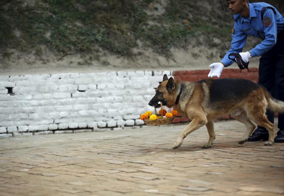 Police in Kathmandu 15