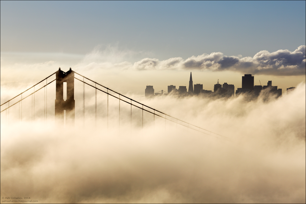 San Francisco is a City of bridges and fog 021