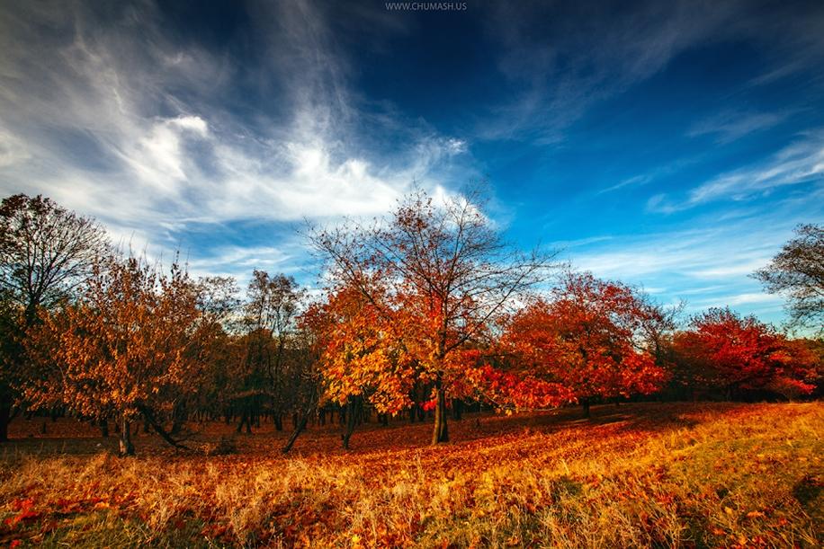 Очарование осенью в пейзажах Молдовы