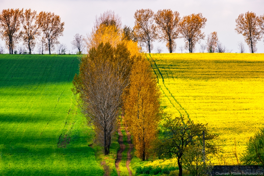 The charm of autumn in the countryside of Moldova 07