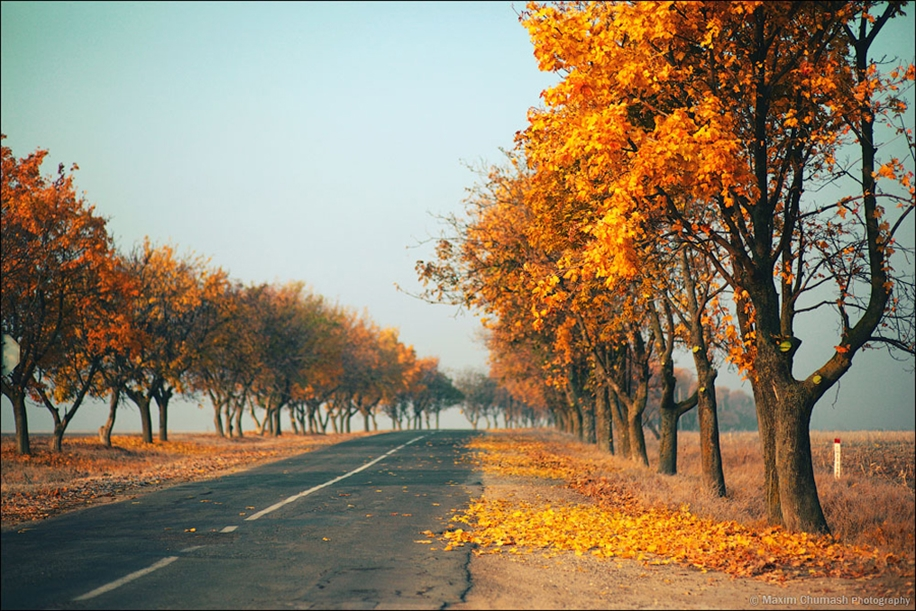 The charm of autumn in the countryside of Moldova 08