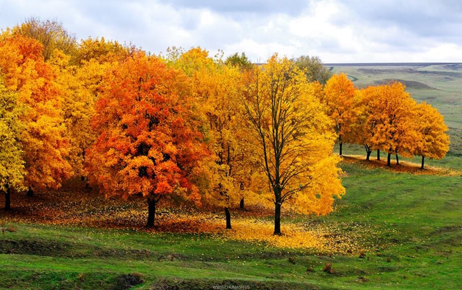 The charm of autumn in the countryside of Moldova 12