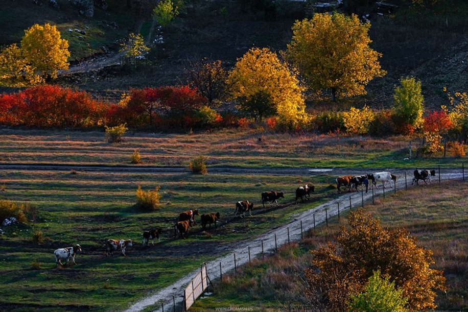 The charm of autumn in the countryside of Moldova 14