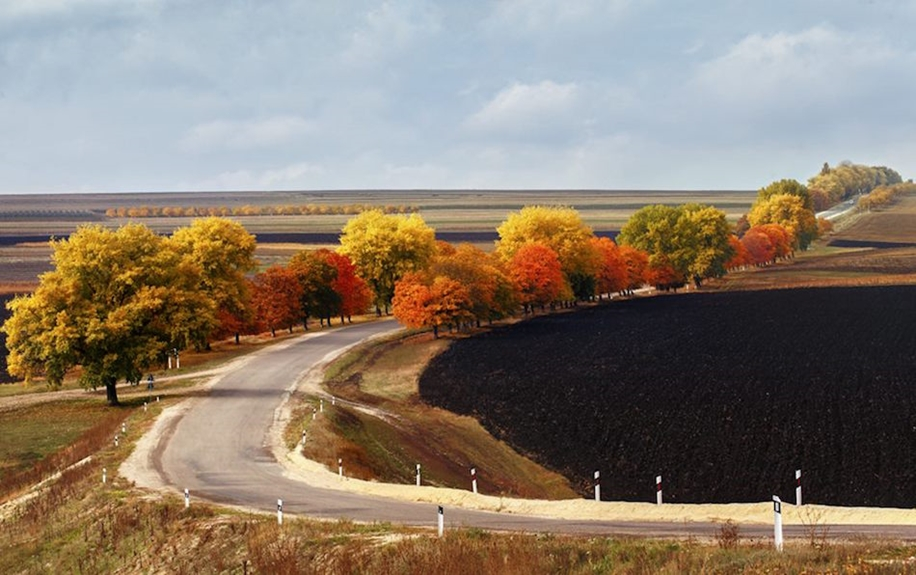 The charm of autumn in the countryside of Moldova 15