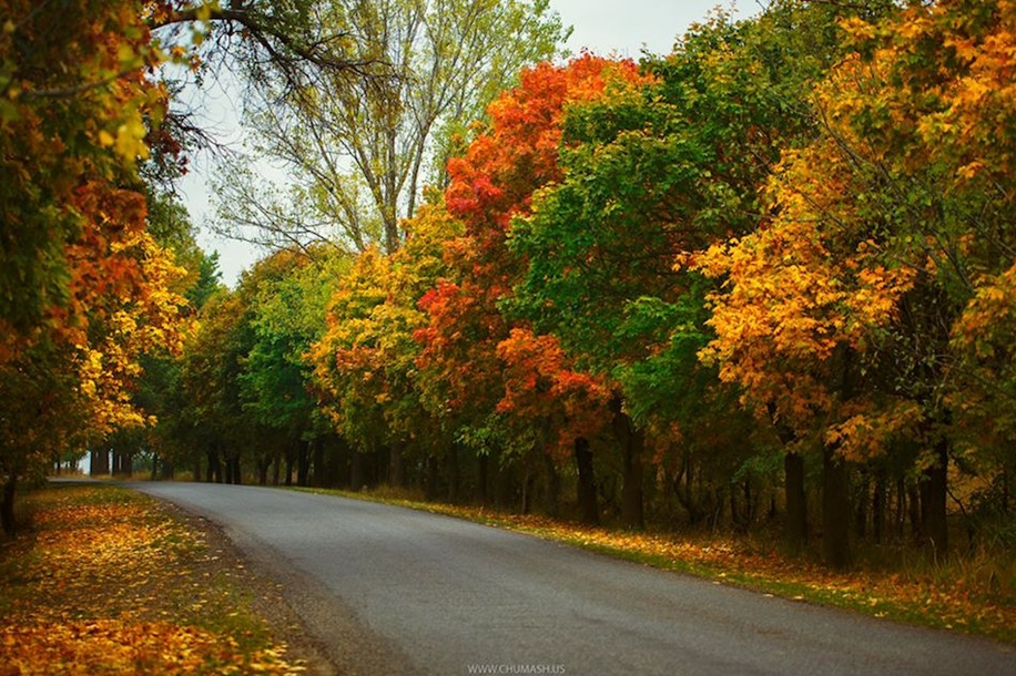 The charm of autumn in the countryside of Moldova 26