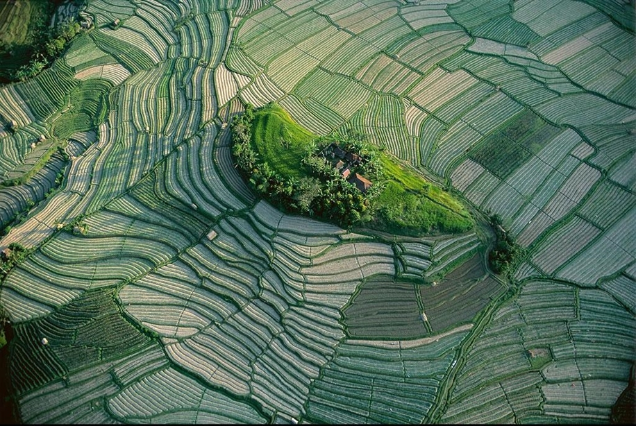 The world from above in the photos of Yann Arthus Bertrand 02