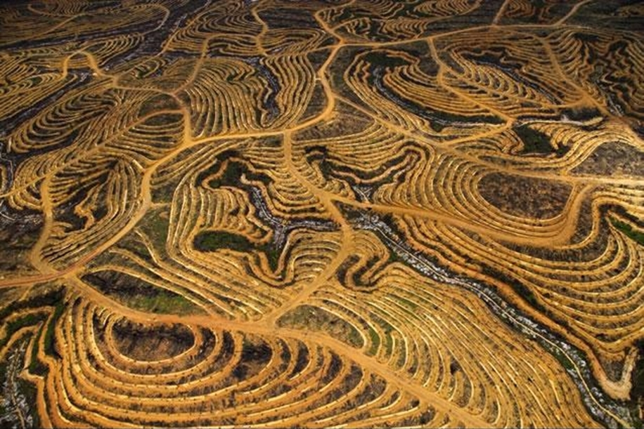 The world from above in the photos of Yann Arthus Bertrand 12