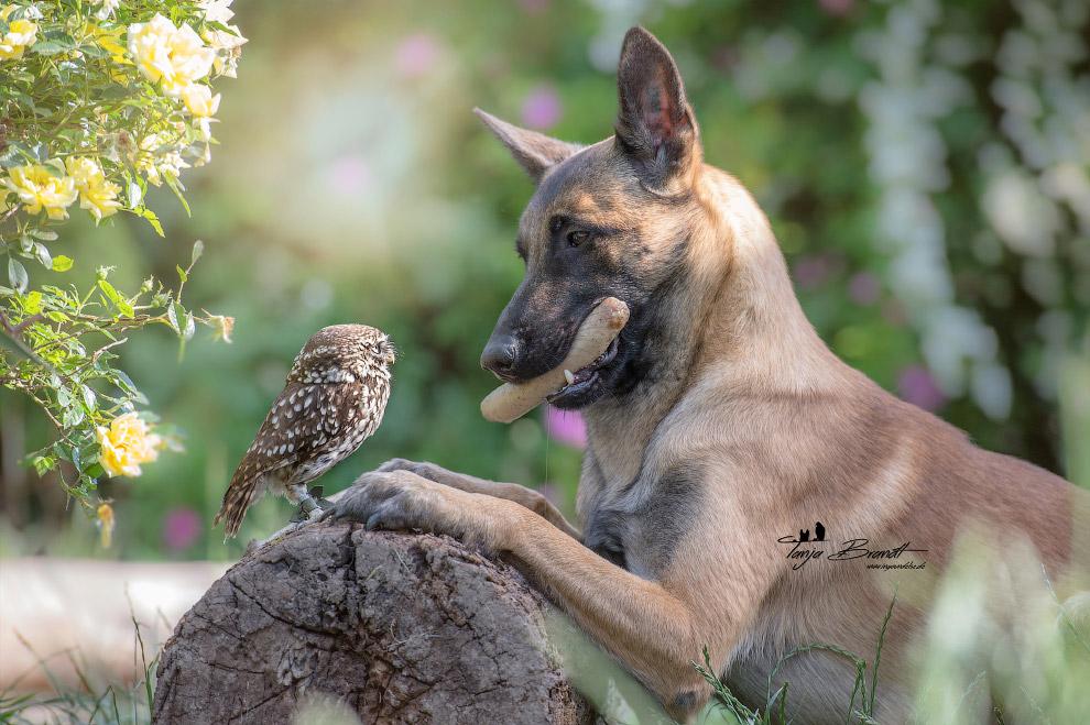 True friendship 10