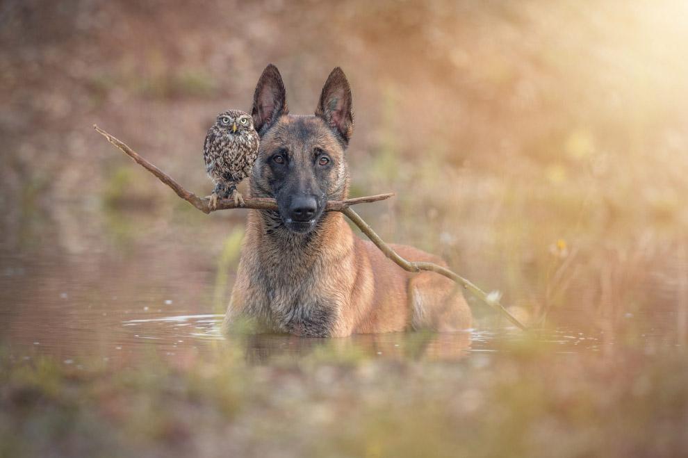 True friendship 11