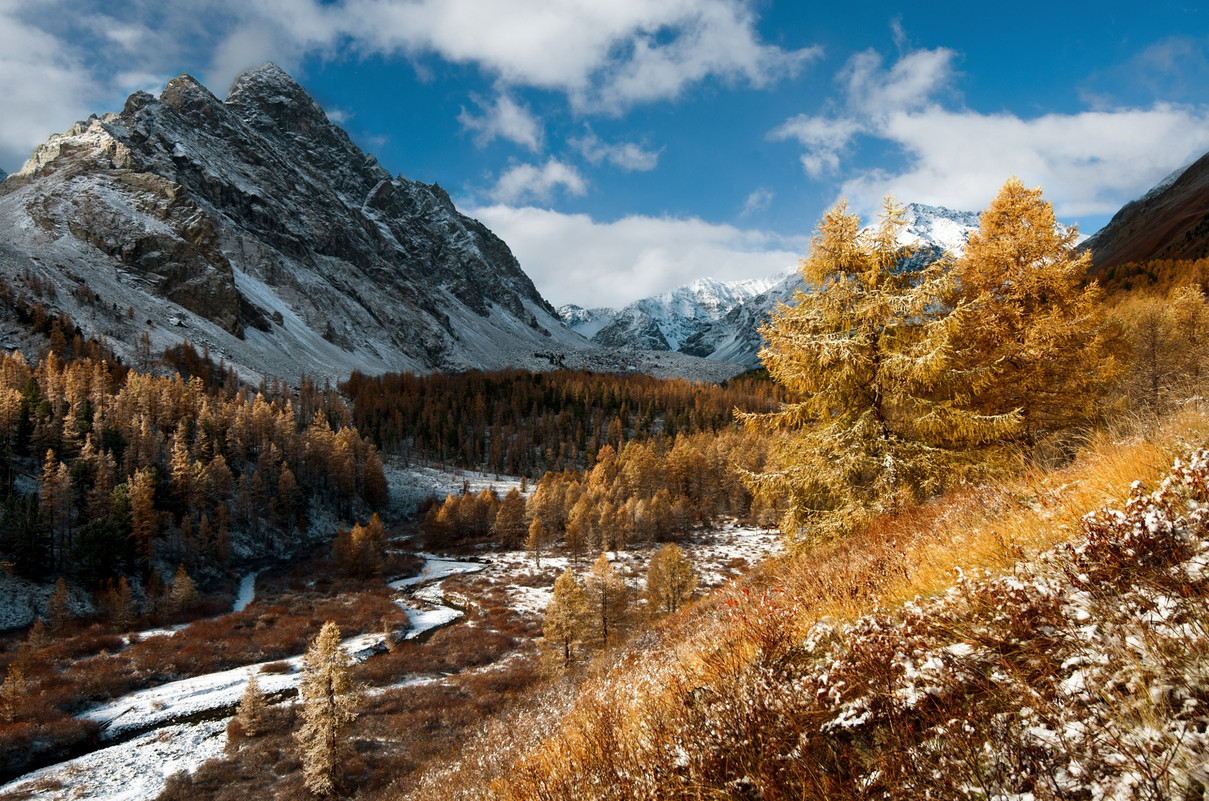autumn landscapes of Altai 07