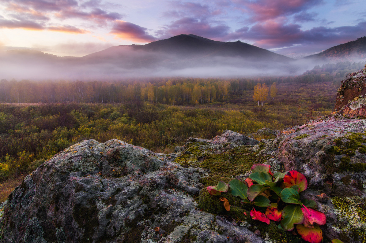 autumn landscapes of Altai 08