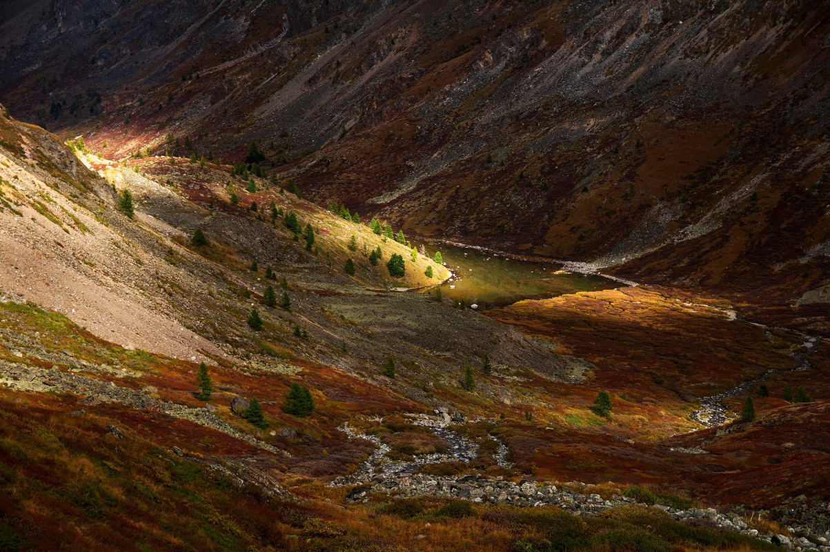 autumn landscapes of Altai 09