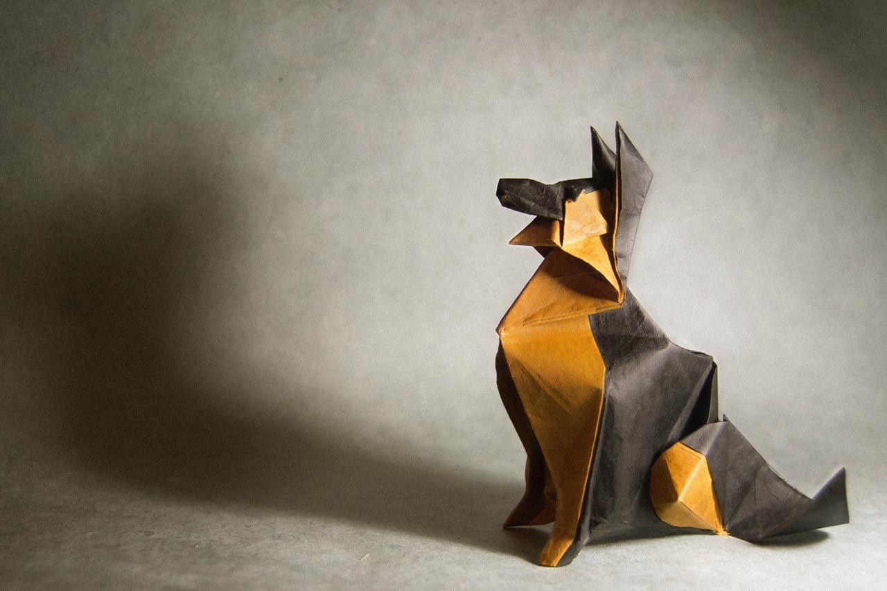 origami Gonzalo Calvo 04