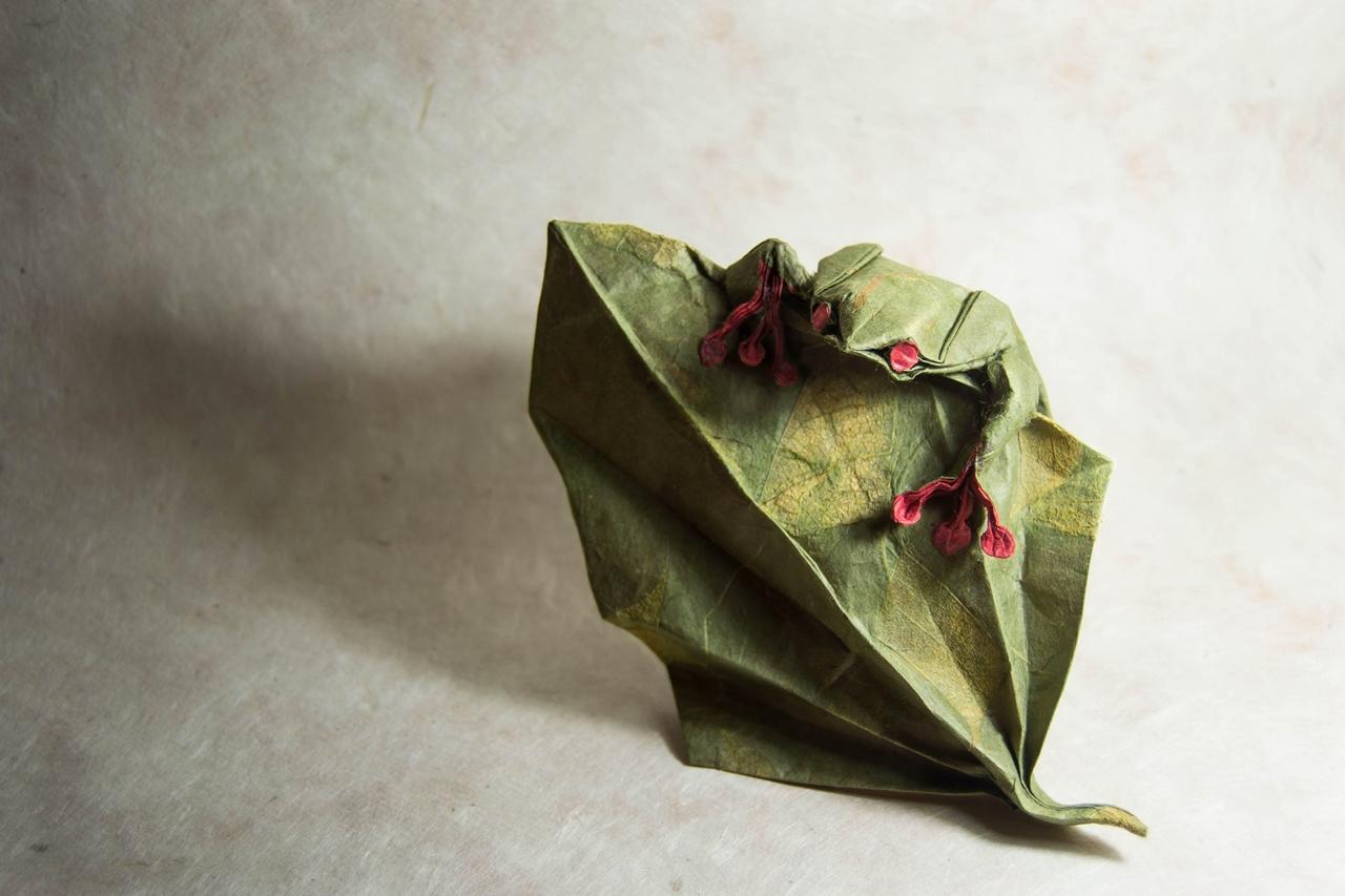 origami Gonzalo Calvo 05