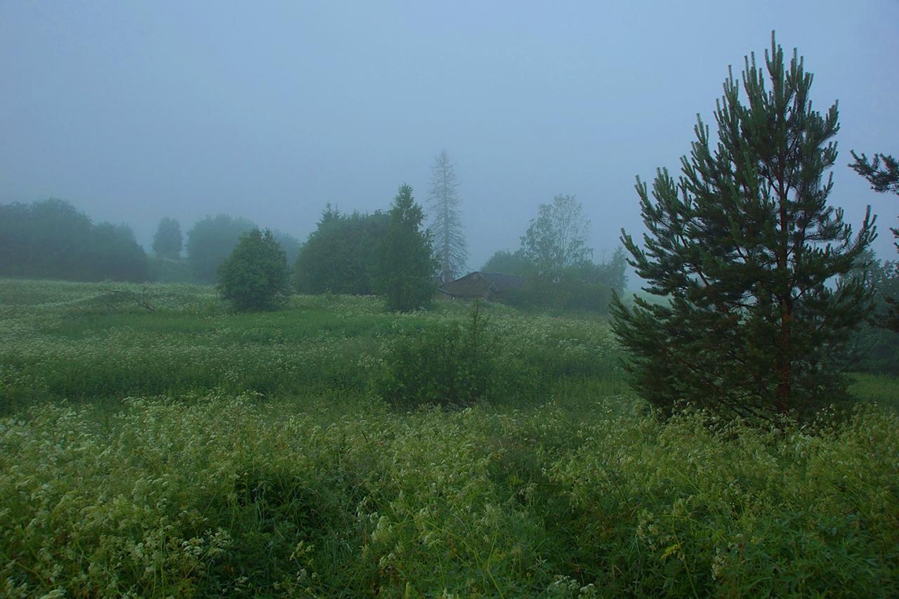 Abandoned village - Segozero 04