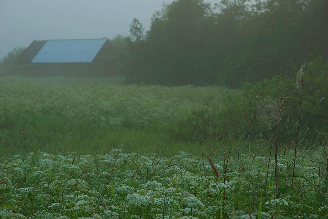 Abandoned village - Segozero 07