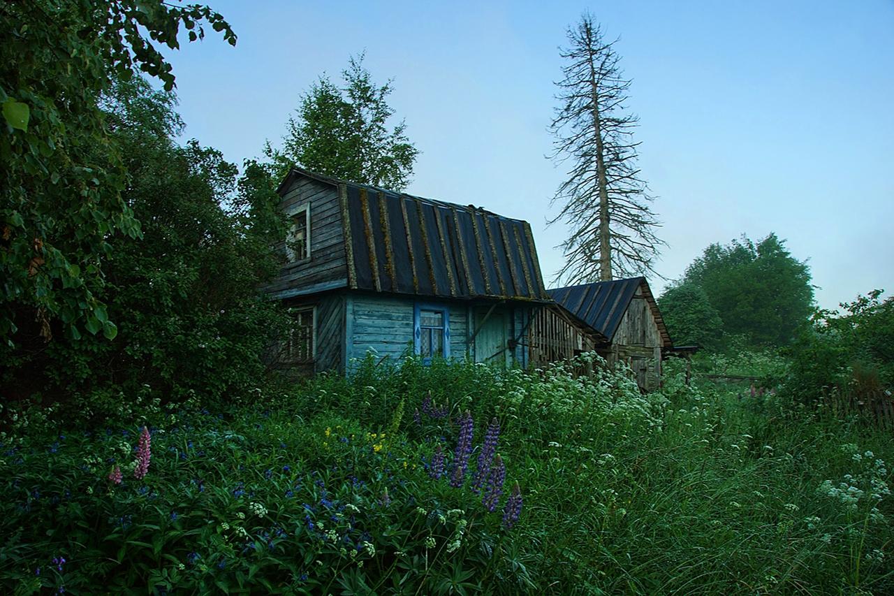 Abandoned village - Segozero 12