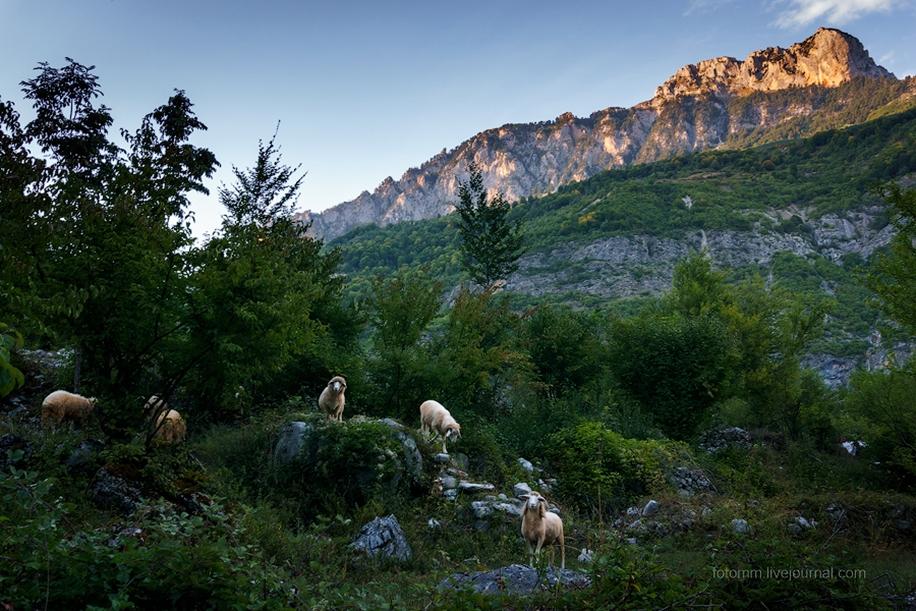 Albania. The dark horse of Europe 32