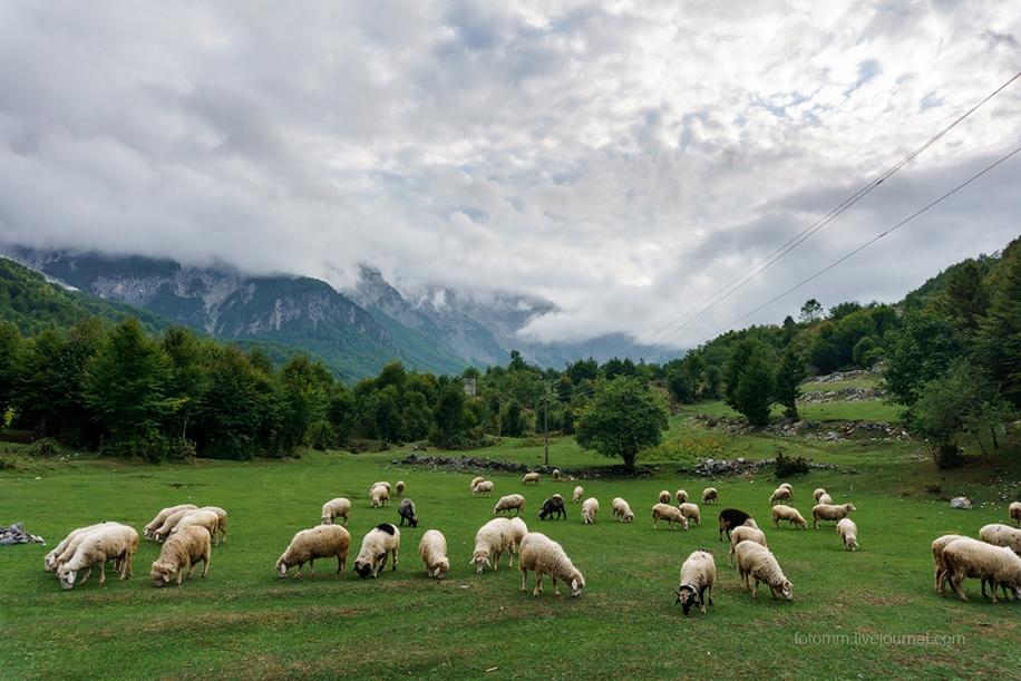Albania. The dark horse of Europe 41