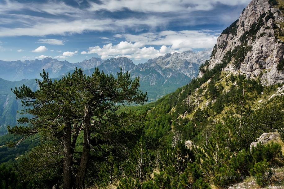 Albania. The dark horse of Europe 56