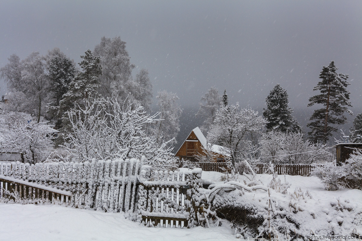 Altai harsh winter 04