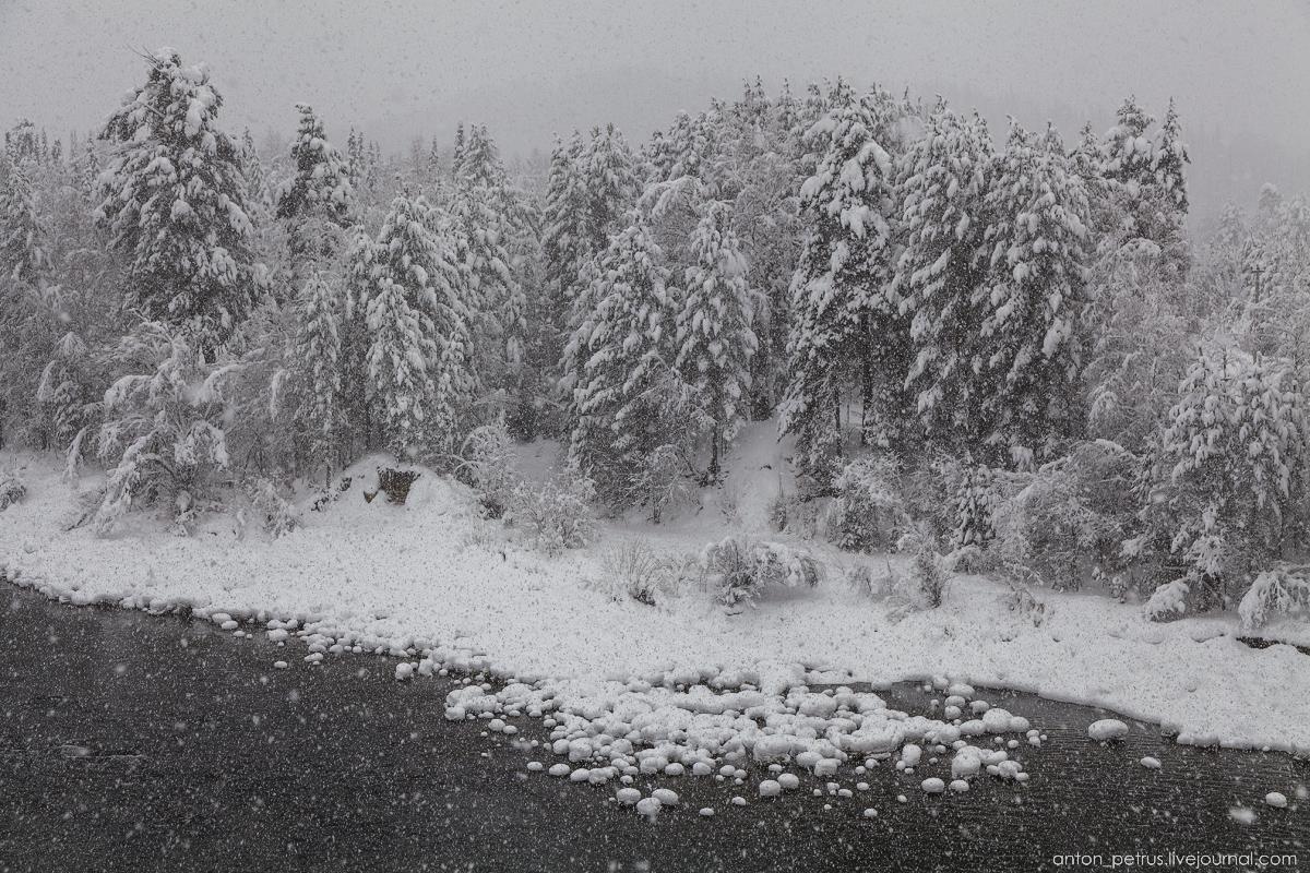 Altai harsh winter 09