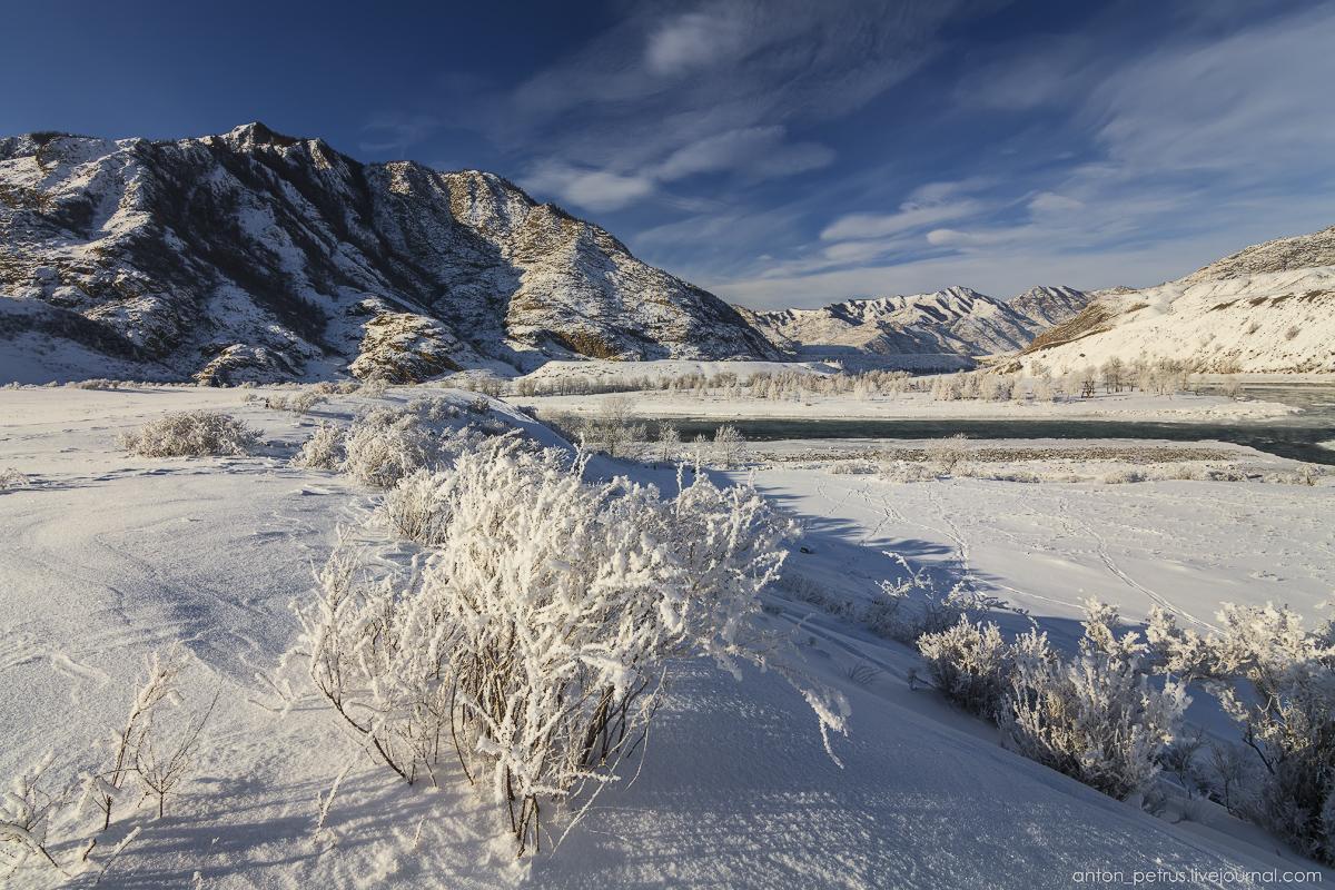 Altai harsh winter 13