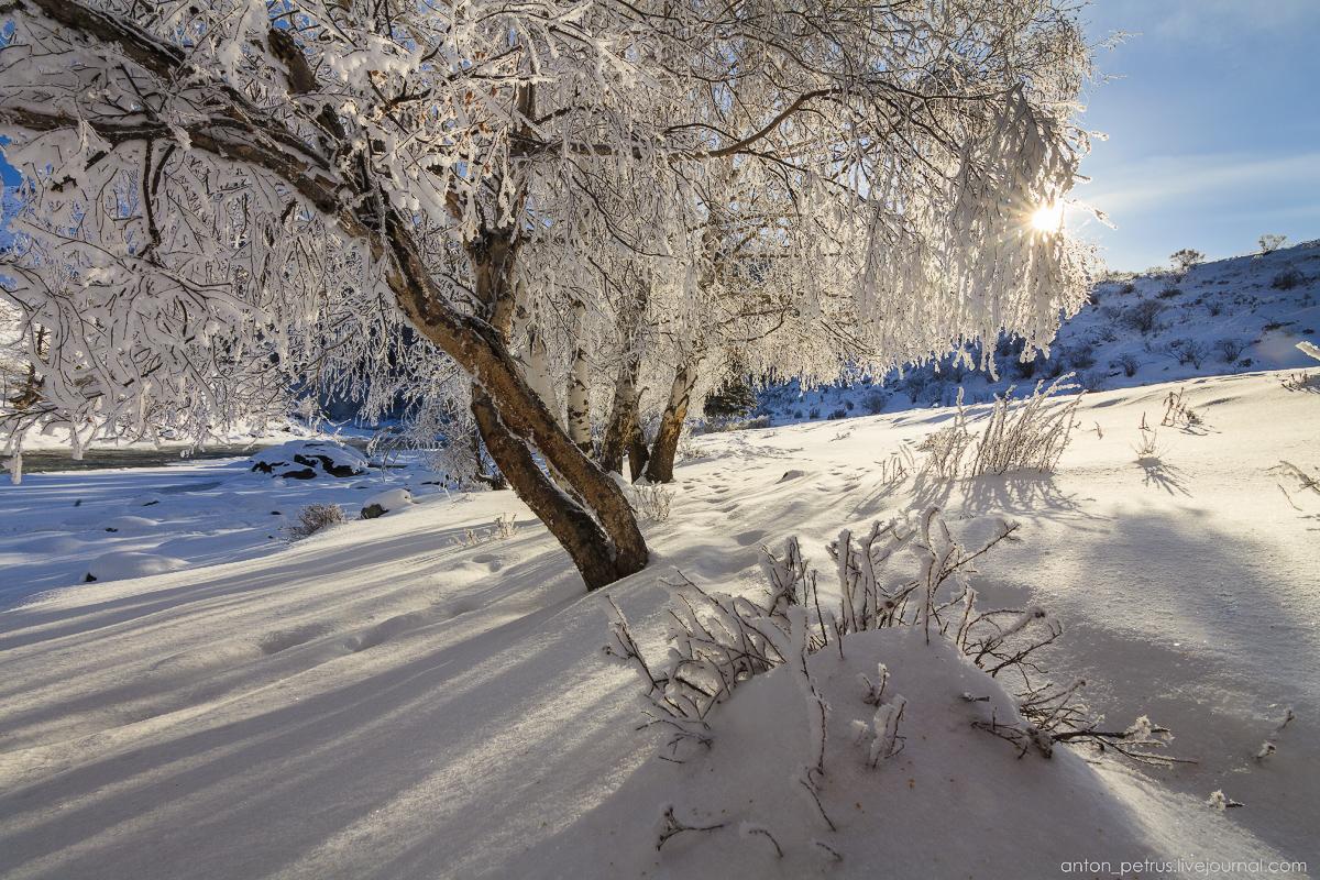 Altai harsh winter 14