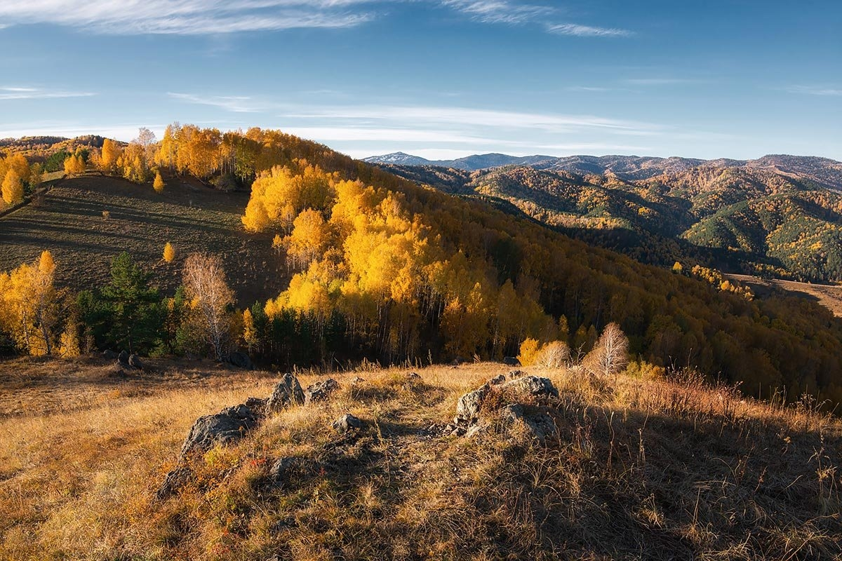 Amazing nature of the Altai territory in landscapes 02