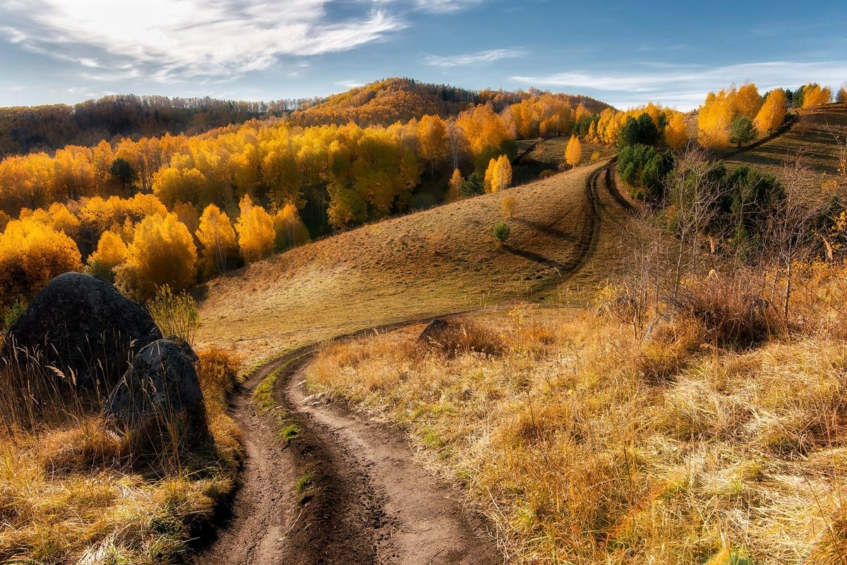Amazing nature of the Altai territory in landscapes 12