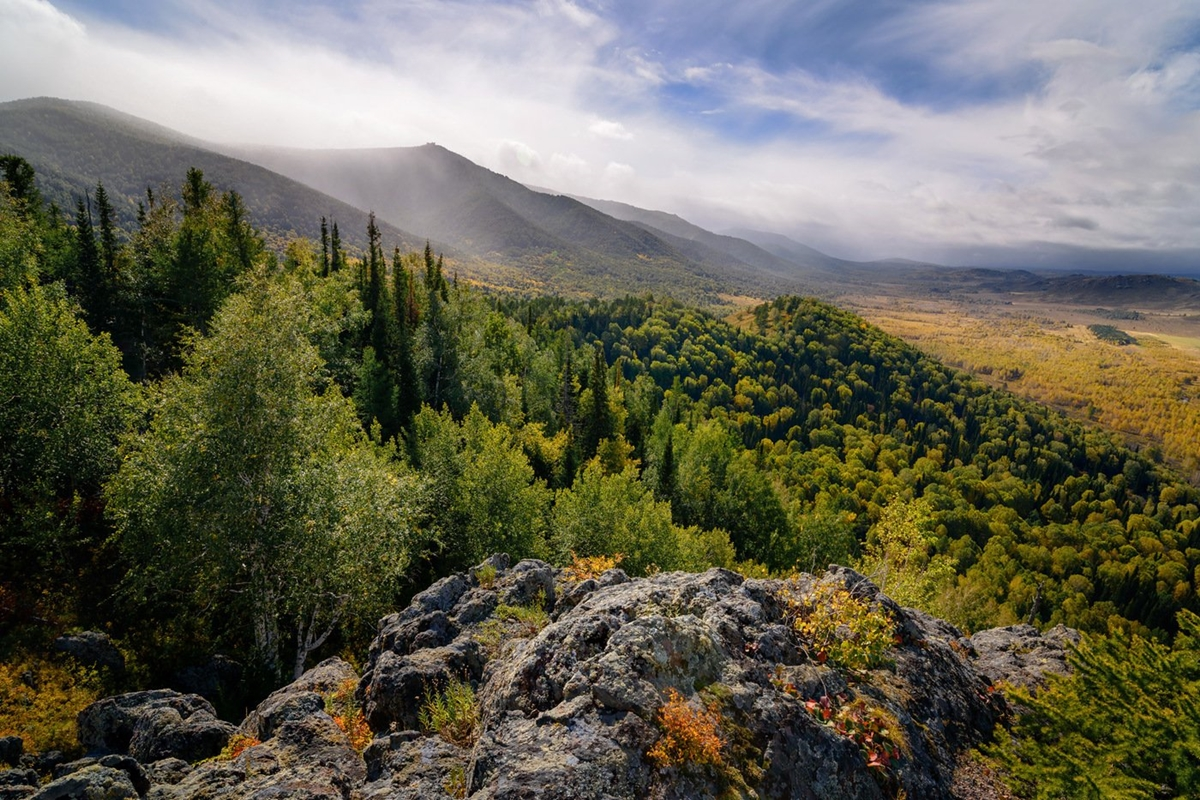 Amazing nature of the Altai territory in landscapes 16