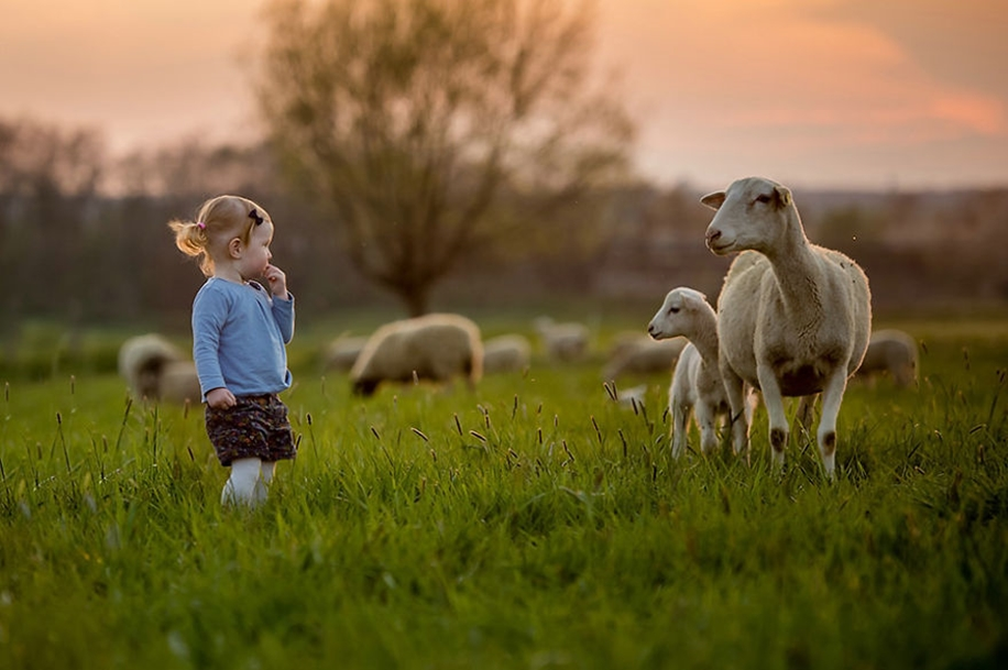 Amazing shots of children and animals from different parts of the world 31