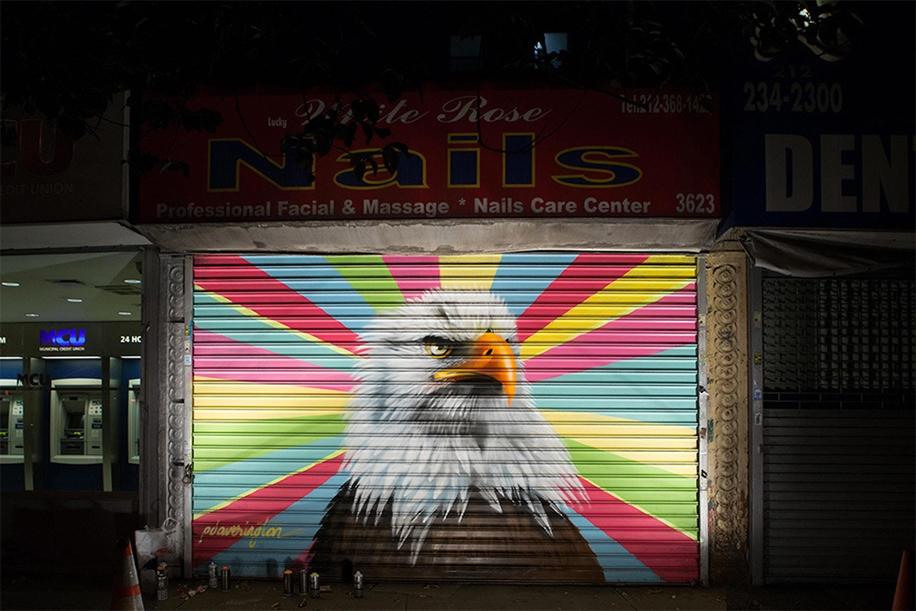 Исчезающие птицы на домах Манхэттена и в лаборатории Корнелл