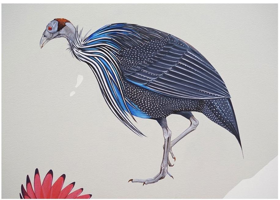 Endangered Birds to the Facades of Manhattan 14