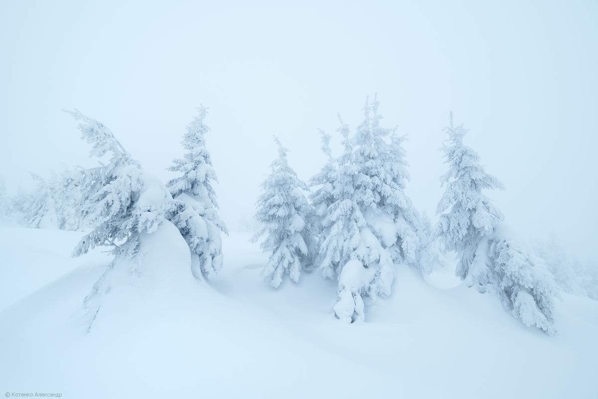 Fabulous winter 03