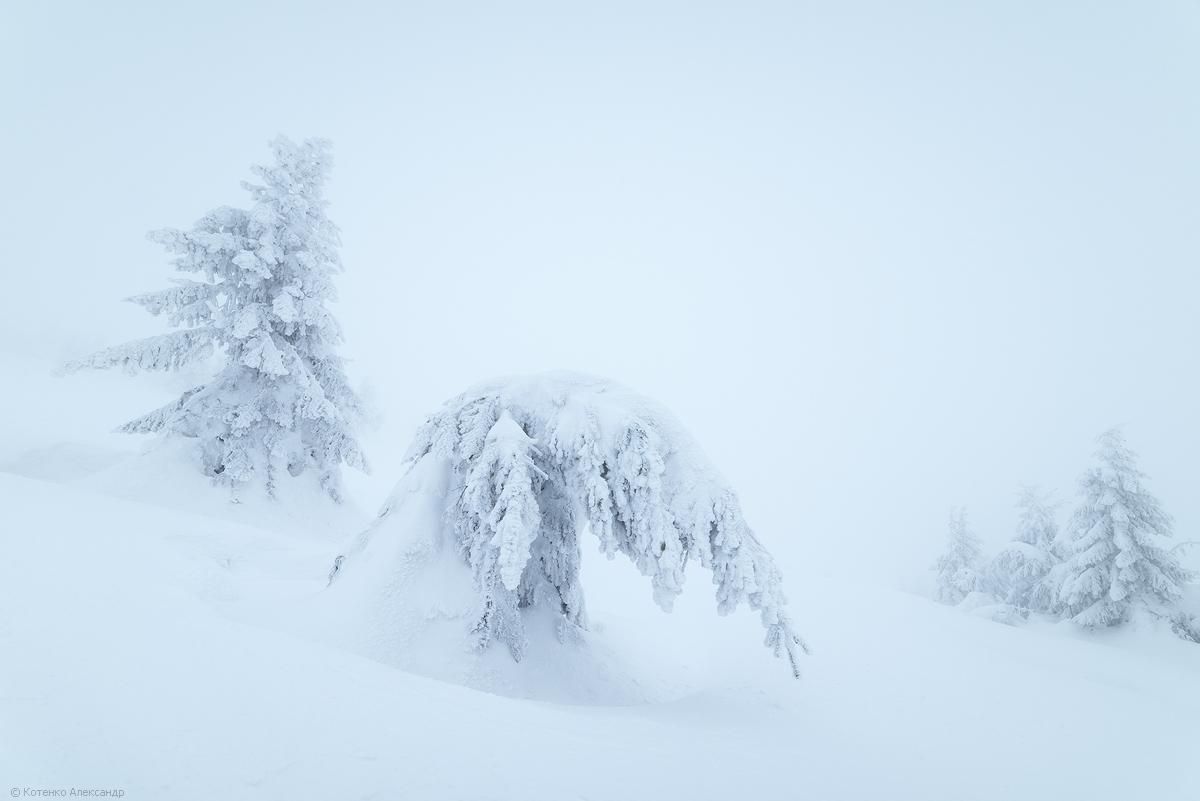 Fabulous winter 04